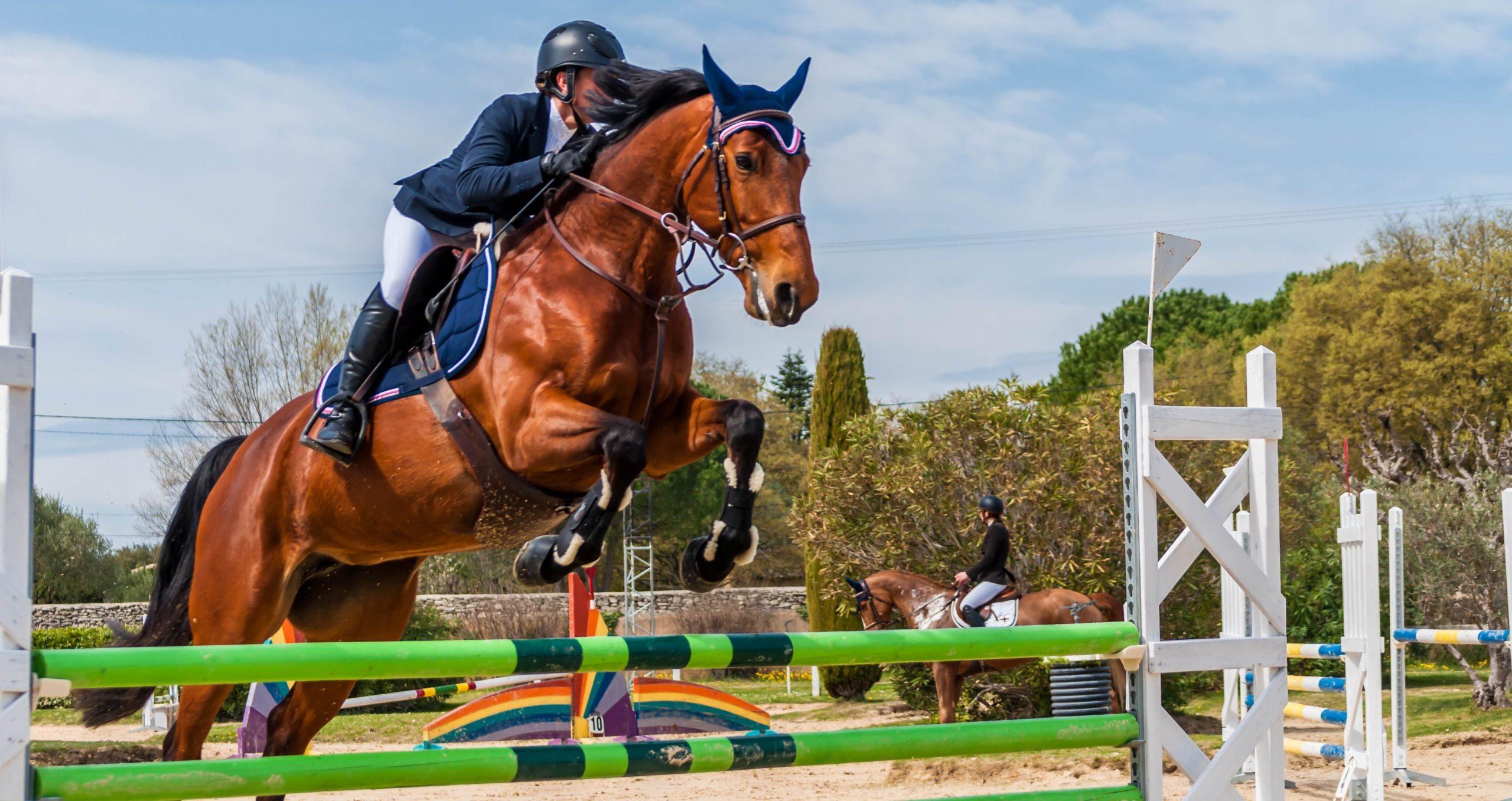 équitation paris 2024